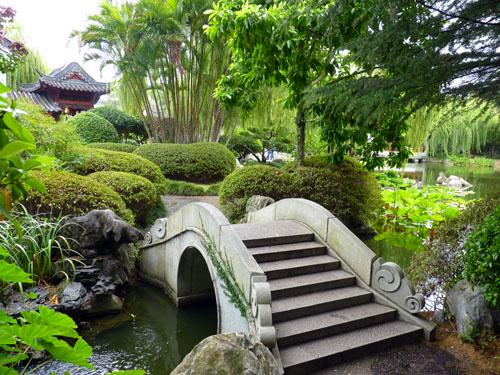 Китайский сад в 2016 году